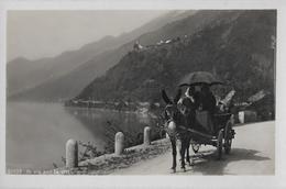 LAGO DI LUGANO - In Via Per La Città, Fotokarte Ca.1930 - TI Tessin