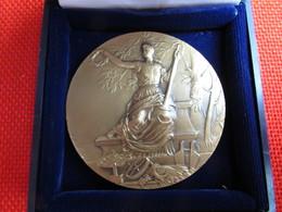 Belle Médaille Agricole Agriculture Bronze Avec Coffret  Origine Nord France Graveur L.O.Mattei 65 G 5 Cm TBE - Professionals / Firms