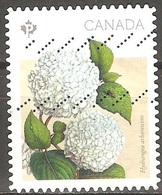 Canada - 2016 - Hortensia De Virginie - YT 3223 Oblitéré - 1952-.... Règne D'Elizabeth II