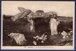 56 CARNAC Entrée Du Dolmen De Kermario - Carnac
