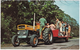 Port Maria: 2135 MASSEY-FERGUSON TRACTOR - Plantation Tour, Brimmer Hall - Jamaica - Toerisme
