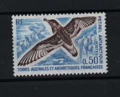 VP6L2 TAAF FSAT Antarctic Neuf** MNH Oiseaux Birds Petrel Antarctique N 56   1976 - French Southern And Antarctic Territories (TAAF)