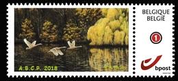 BUZIN.  CIGNE TUBERCULE - 1985-.. Oiseaux (Buzin)