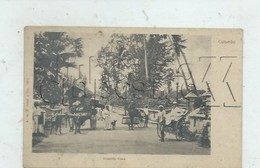 Colombo (Sri-Lanka Ou Ceylan) : MP D'attelage Colpetty Road En 1905 (animé) PF. - Sri Lanka (Ceylon)