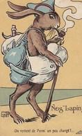 Nos Lapins - On Revient De Perm' Un Peu Chargé !... - Dieren