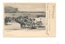 PA523 SICILIA PALERMO PORTO 1901 Viaggiata - Palermo
