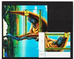 SRO43 VEREINTE NATIONEN UNO GENF 1998 Michl 346 + BLOCK 10 ** Postfrisch - Genf - Büro Der Vereinten Nationen