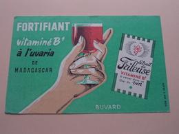 Fortifiant Vitaminé B1 à L'uvaria De Madagascar FRILEUSE ( +/- 13 X 20,5 Cm. ) Buvard ( Voir Photo ) ! - Produits Pharmaceutiques