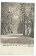 Gooreind Colonie Missionnaire Des F.M. De M. à Gooreind - L'Allée Du Parc - Wuustwezel