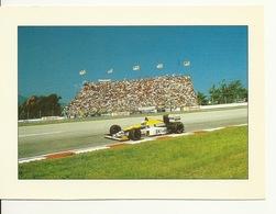SPORT AUTOMOBILE GRAND PRIX F1 / WILLIAMS RENAULT - CIRCUIT De RIO En MARS 1989 - Grand Prix / F1