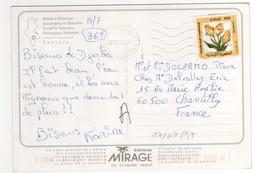 """Beau Timbre """" Fleur """" , Stamp Sur Cp , Carte , Postcard Pour La France Du 17/07/1997 - Tunisie (1956-...)"""