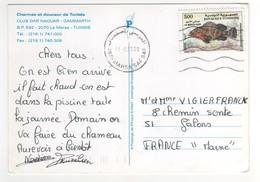 """Beau Timbre """" Poisson """" , Stamp Sur Cp , Carte , Postcard Pour La France Du 14/08/2000 - Tunisie (1956-...)"""