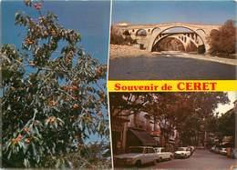 CPSM Ceret                                   L2733 - Ceret