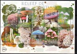 NETHERLANDS, 2018, MNH, MUSHROOMS,  SHEETLET - Mushrooms