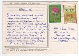 Beaux Timbres , Stamps Sur Cp , Carte , Postcard Pour La France Du 08/09/1991 - Tunisie (1956-...)