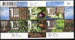 NETHERLANDS, 2018, MNH, VEGETABLE GARDEN, VEGETABLES,   SHEETLET - Vegetables