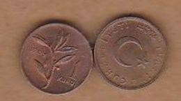 AC - TURKEY 1 KURUS 1969 BRONZ COIN UNCIRCULATED - Turquie