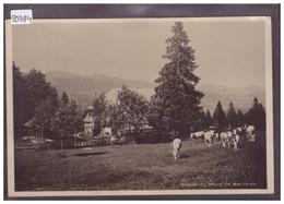 FORMAT 10x15cm - DISTRICT DE GRANDSON - CHALET DU MONT DE BAULMES - TB - VD Vaud