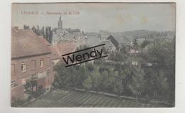 Enghien (panorama De La Ville - Color 1906) - Edingen