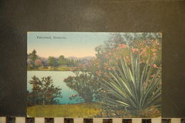 CP, Amérique, Antilles, BERMUDES Fairyland Bermuda N°50 Edition The Herrington Co Bermuda - Bermudes