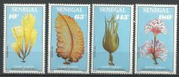 "Senegal YT 763 à 766 "" Flore Marine ""1988 Neuf** - Senegal (1960-...)"