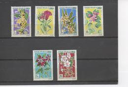 CONGO - Flore - Fleurs Tropicales : Celosia Cristata, Cogniauxia Padolaena, Plumeria Acutifolia, Bauhinia Variegata, - Congo - Brazzaville