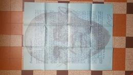 ELECTION DU PRESIDENT DE LA REPUBLIQUE FRANCAISE 5 DEC. 1965 AFFICHE GENERAL DE GAULLE PRESIDENT SORTANT - Affiches