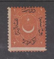 TURQUIE Yvert N°22  *MH  Réf N119 - Turquie