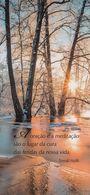Marque-page °° Portugal - Forêt Soleil Et Citation De T. Halik - V. Uni 6x14 - Marque-Pages