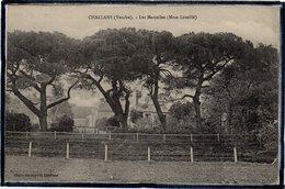 CHALLANS - LES MARZELLES ( MME LEVEILLE ) - Challans