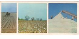 Soviet Uzbekistan Fergana Cotton Harvesting PC Long Format - Ouzbékistan