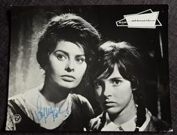 SOPHIA LOREN - Original Autograph / Autogramm Auf Altem Kino-Aushangfoto (Format: Ca. 30 X 23,5 Cm) - Ag0012 - Autographes