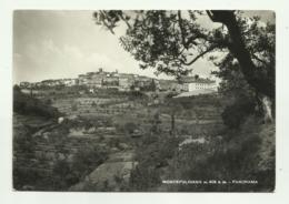 MONTEPULCIANO - PANORAMA - VIAGGIATA FG - Firenze