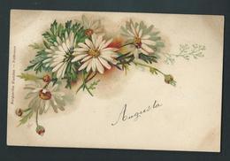 Marguerites Blanches. Préfèrence. Litho Signée.  Voyagée En 1903. 2 Scans. - Fleurs