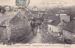 HARAMONT - Equipage Menier - Hallali De Cerf Sur Un Toit - France