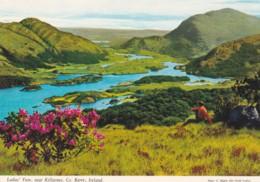 LADIES VIEW , NR KILLARNEY - Kerry