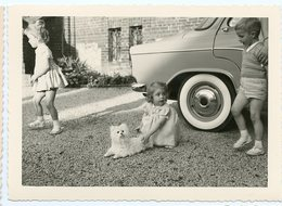 Voiture Roue Reflet Enfant Kid Fille Cute Girl Jouet Chien Pet Dog Toy Peluche Surreal  60s - Personnes Anonymes