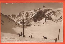 TRG-06 Panorama  Panorama Grand-St.-Bernard Chanoine Et Chiens Dans La Neige - VS Valais
