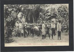 CPA Nouvelle Calédonie New Calédonia Non Circulé Tortue Turtle - Nouvelle-Calédonie