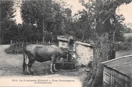 Limousin (87) - Nos Campagnes - L'Abreuvoir - France