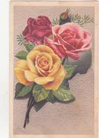 CP - BELLES ROSES - Fleurs