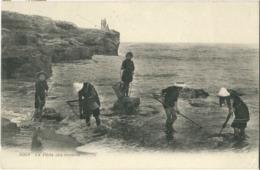Cp La Pêche Aux Crevettes (animée, Enfants) N° 5068 - Pêche