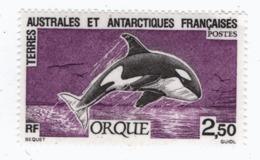 VP6L4 TAAF FSAT Antarctic Neufs** MNH  Orque 1993 N 177 - Neufs