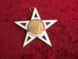 Croce Medaglia Ai Benemeriti Società Buon Senso E Tricolore Firenze Anni '30 - Insegne