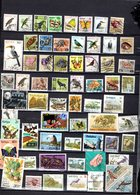 Pays D'Afrique 62 Timbres F6 - Timbres