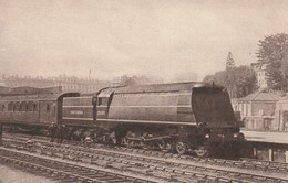 Rare Cpa Train Anglais Locomotive Class N°21C105 à Exeter Central - Trains