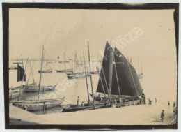 Bretagne . Finistère . Douarnenez . Port Des Pêcheurs . Voiliers . Bateaux De Pêche Immatriculés D 362 Et D 328 . 1901 . - Lieux
