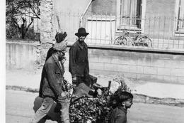 Photo Anonyme Vintage Groupe Gitan Brocanteur Ferrailleur - Profesiones