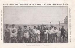 Colonie Agricole De La Fontonne    Orphelins De Guerre - Antibes