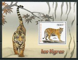 Ivory Coast 2017 MNH Tigers 1v S/S Tigres Big Cats Mammals Wild Animals Stamps - Big Cats (cats Of Prey)